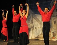 The Hispanic Flamenco Ballet: April 29, 2008
