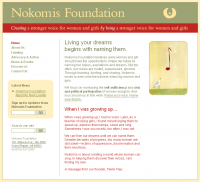 CMC creates website for Nokomis Foundation